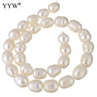 Культивированный мелкий пресноводный жемчуг, бусины, натуральный белый, 10-11 мм, Приблизительно 0,8 мм, Продан через приблизительно 15 дюймовый...