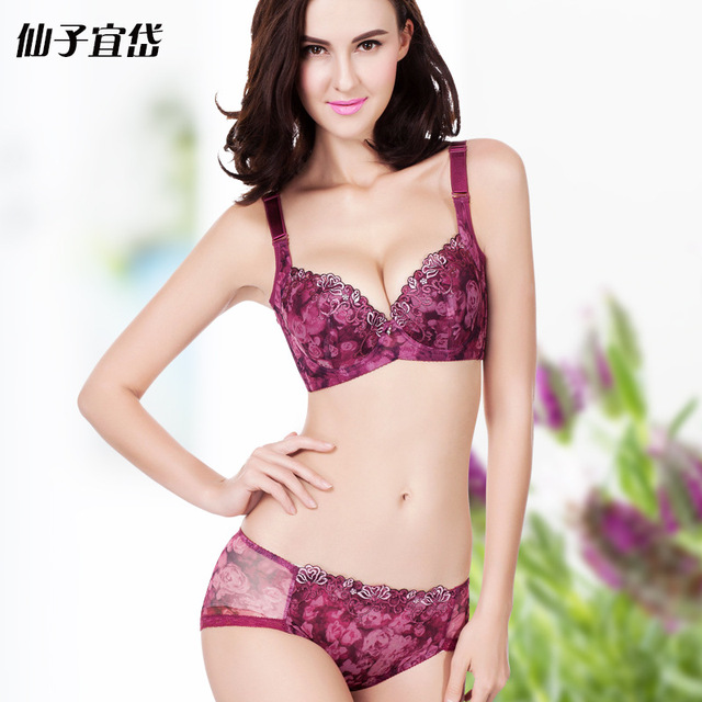 Sexy Women Bra Brief Sets Lace Embroidery Hot Ladies Underwear Sets Push Up Bra And Brief Set Intimates