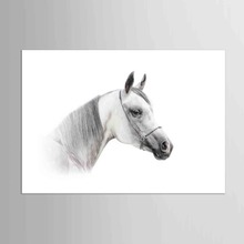 1 panel Fashion Animals White  Horse Painting Canvas Nordic Style Modern Home Office wall Decor