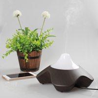 HUOX Music Color Changing Ultrasonic Aromatherapy Humidifier Flower Wooden Grain Aroma Diffuser Home Office LED Light