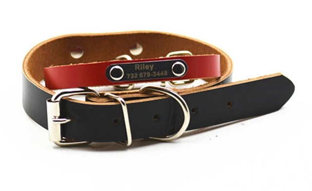 Dachshund Collar with Engraving