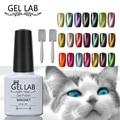 LABORATORIO DE GEL 10 ml Cualquier 15 Colores De 90 Colores + Free imán Magnético Cats Eye 3D UV Soak Off Gel Esmalte de Uñas