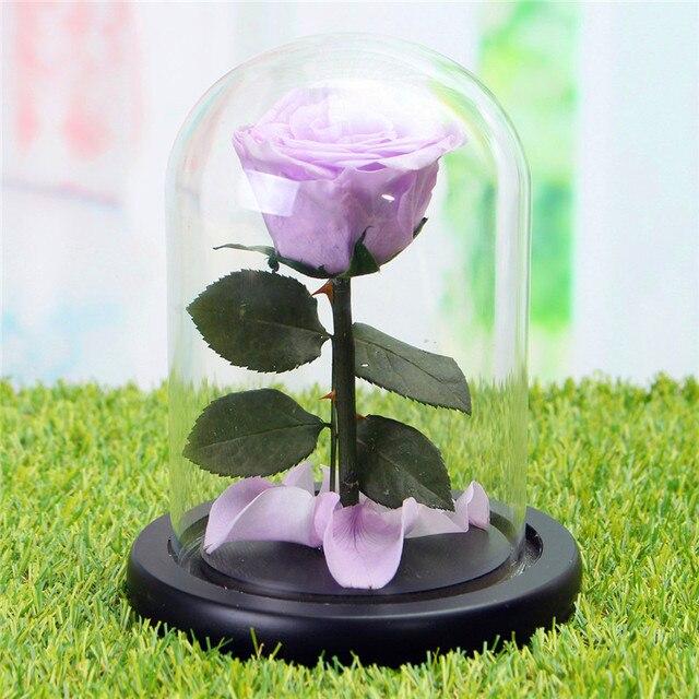 Красивые DIY Вечный цветы сохранились цветы Природные свежая Роза стеклянная...