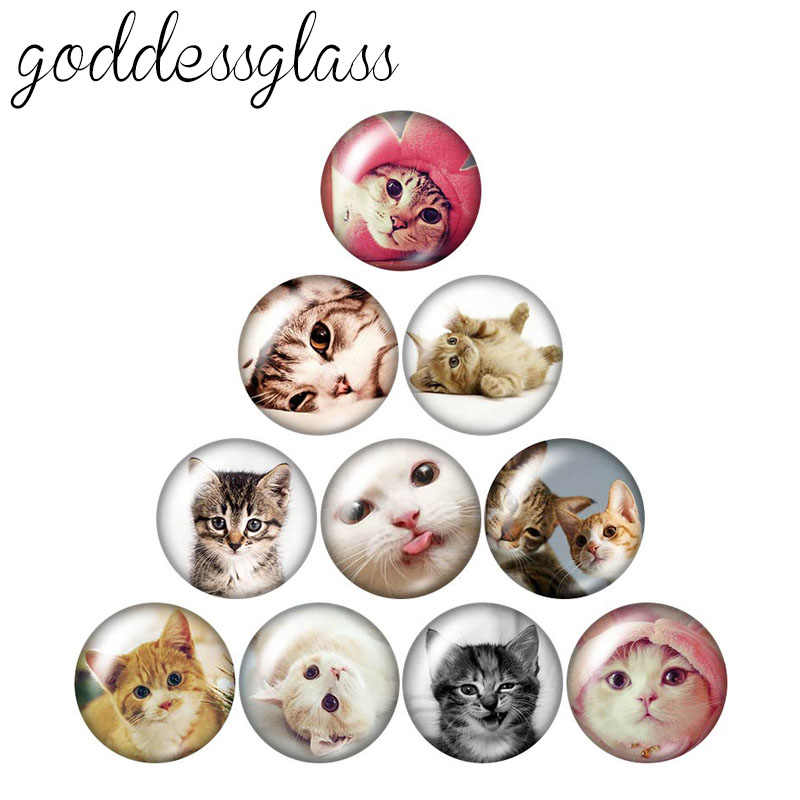 Lovely cats cartoon cats 10pcs mixed 12mm/18mm/20mm/25mm Round photo glass cabochon demo flat back Making findings
