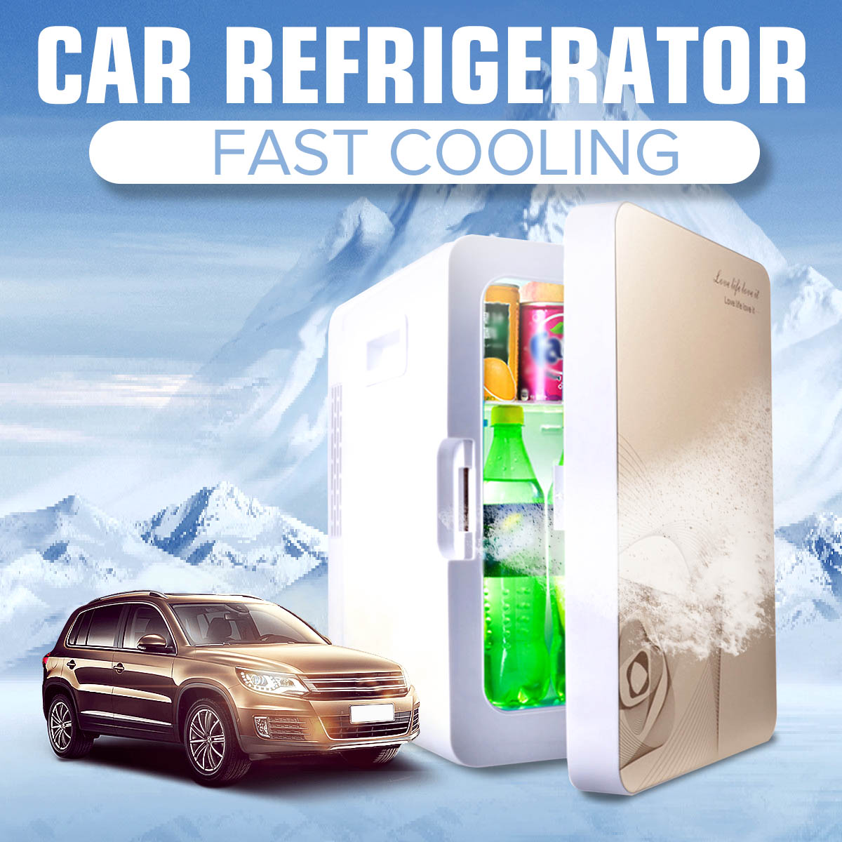 Portable 20L Car Home Use Mini Refrigerator Cooler Warmer Dual-use Fridge Box Temperature Control 12V/220V(China)