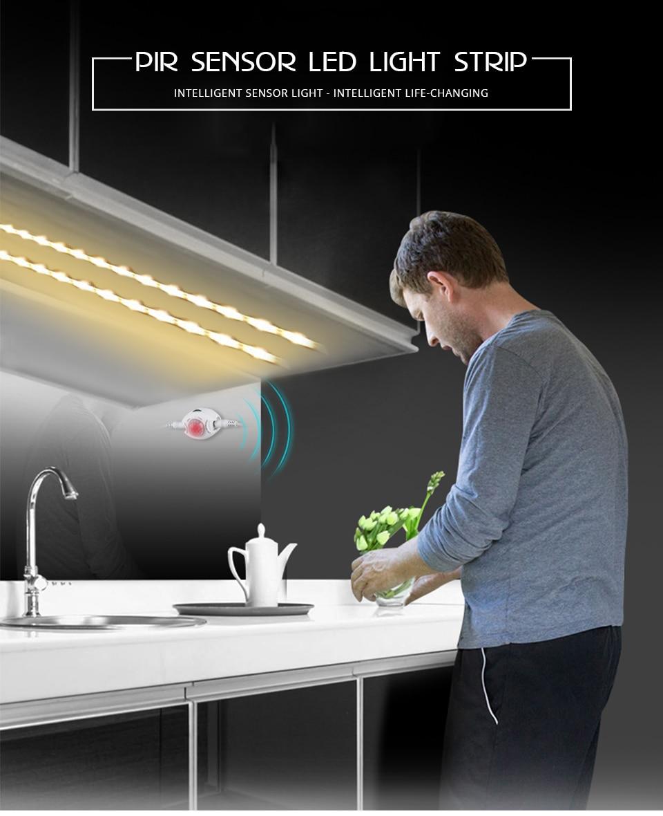 PIR LED Strip light (1)