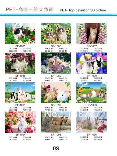 HD 3D stereoscopic paintings/3D picture/size30*40/Retail orwholesale /1087
