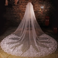 Newest Tulle Cathedral Lace Appliques Sequins Beaded Wedding Veils voile mariage birdcage veil