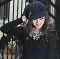 Бесплатная доставка мода женщин шляпа зимняя шапка теплый мода девушка шерсти фетровая шляпа спорта на открытом воздухе яркий форма два цвета на выбор