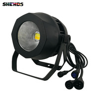 10PCS Waterproof LED Par COB 200W Cool+Warm White Stage Effect DMX512 Lighting For Outdoor Swimming Pool And KTV Party Clubs