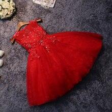 Платье принцессы 2016 новые девушки театрализованное платье для празднования дня рождения peform кристалл рукавов бальное платье детские платья