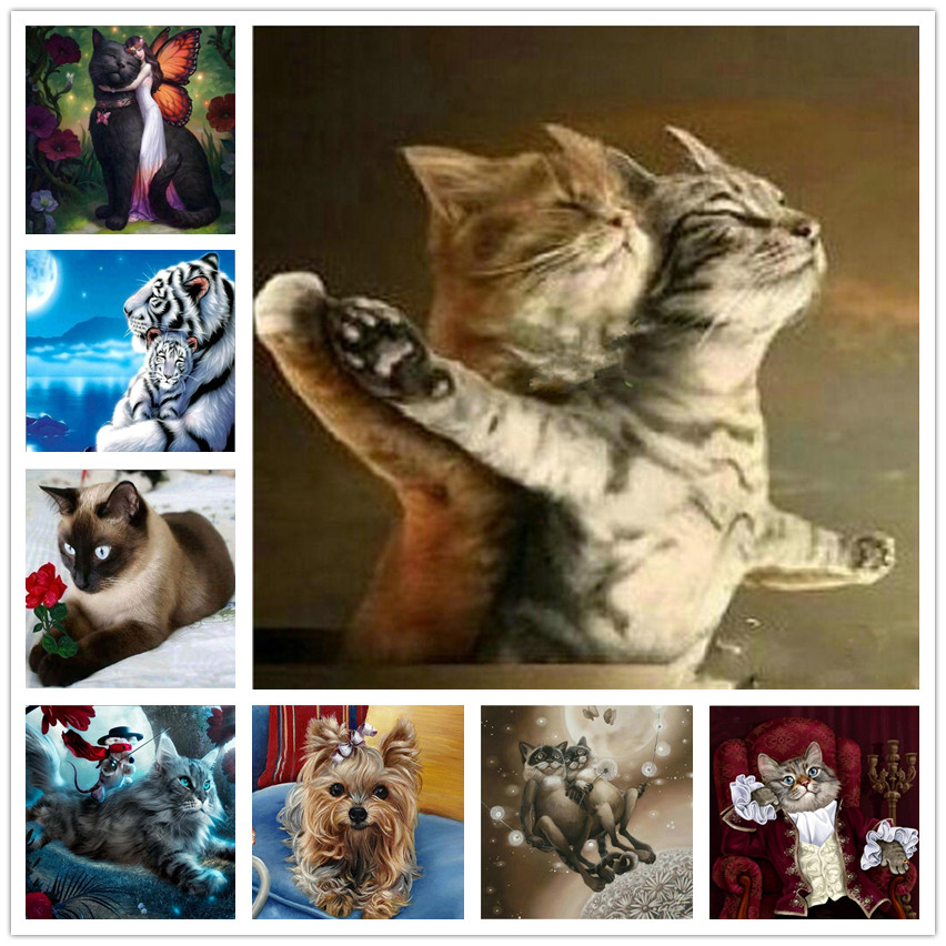 Diy 5D Diamond Embroidery Cartoon Cat 5D Diamond Mosaic Sale Animal 5D Diamond Painting full drill square Kits Best Gift To Kids image