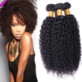 8A Grade Malaysian Virgin Hair Kinky Curly Weave Human Hair Malaysian Curly Hair 4 Bundles/Lot Afro Kinky Curly Virgin Hair