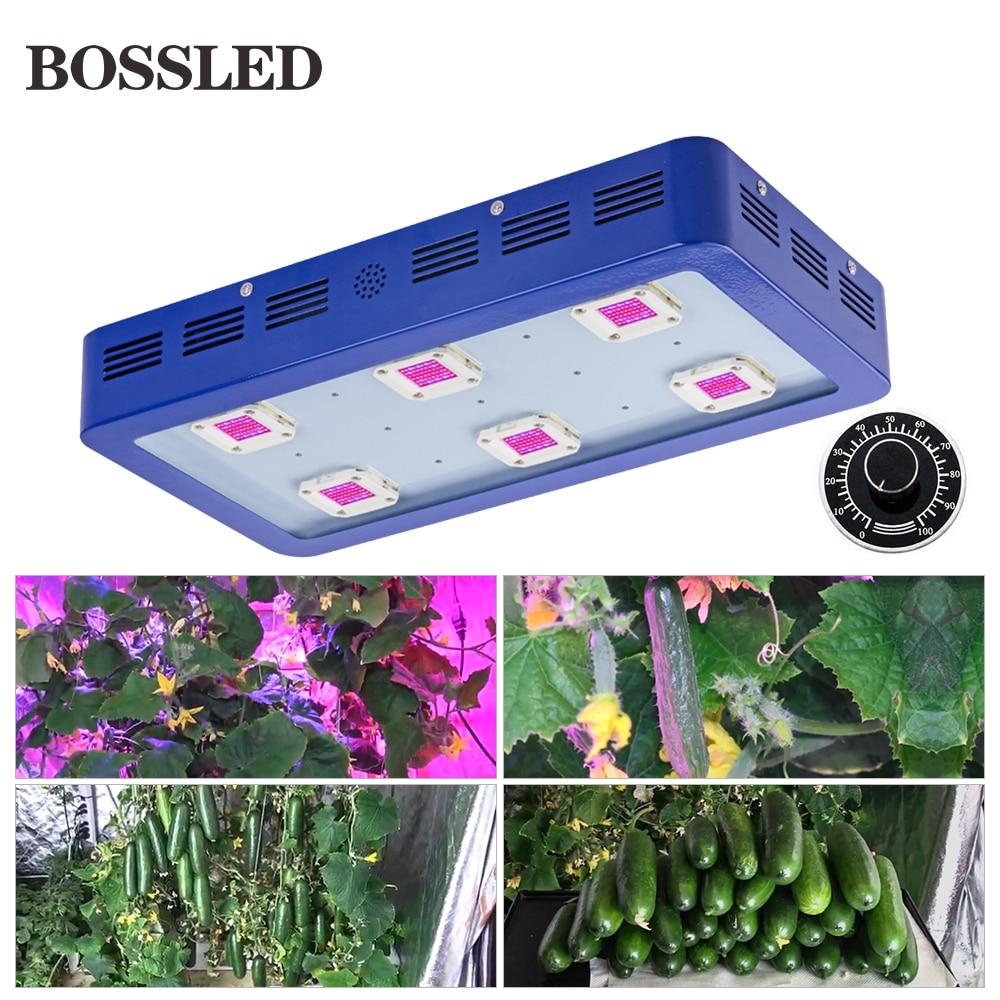 Dimmable 1800 W/1500 W/1200 W/900 W LED grandir lumière spectre complet grandir LED pour les plantes d'intérieur pousser tente pousser boîte veg et fleur