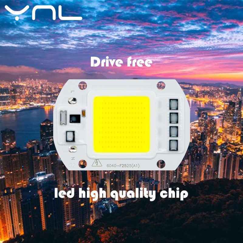 COB LED Chip 50W 110V 220V 30W 20W 10W  Smart IC Fit For DIY Outdoor LED Flood Light No need Driver