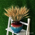Vendas direto da fábrica de campos de trigo naturais flores secas secas cevada trigo planta arte filme adereços de flores vivas 100 peças/pacote