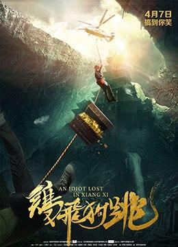 《鸡飞狗跳》2017年中国大陆喜剧,冒险电影在线观看