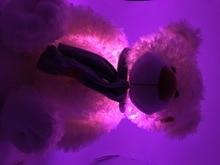 Music Playing Luminous Stuffed Teddy Bear LED Light-Up Plush Glow Auto Color Rotation Upon The Music Rhythm Kid Girlfriend Gift