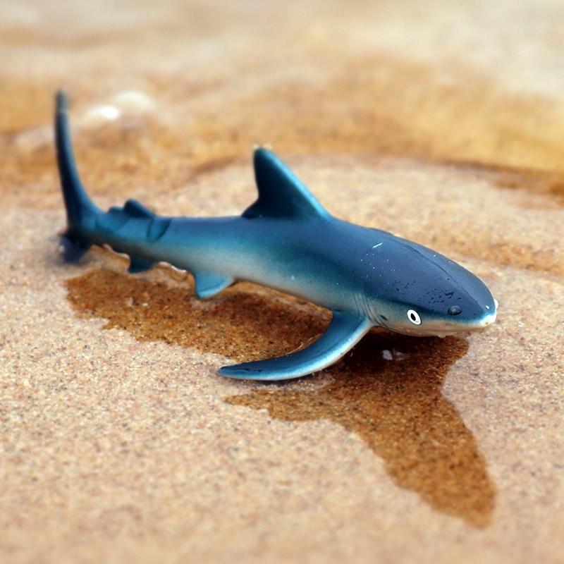 PL127-158小蓝鲨