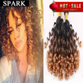 Ombre  Brazilian Virgin Hair Aunty Bouncy Jerry Curl Remy Human Hair Extension Human Hair 1pc/Lot Or Mixed Length 2 Bundle ishow