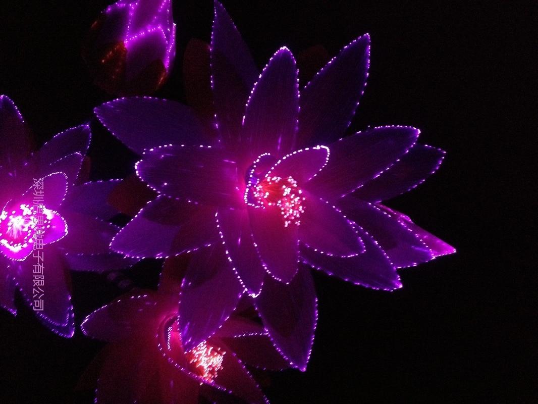 ФОТО 2016 Newest Led flower lights Lotus light buddha lamp Fo lamp Novelty artistic optical fiber flower