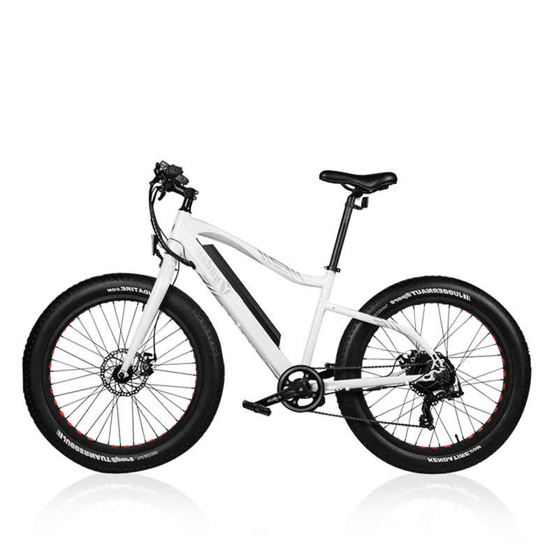 Detail Feedback Questions About 26inch Snow Electric Mountain
