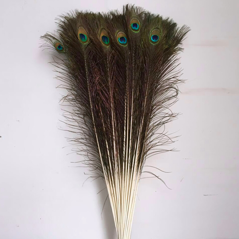 Samba 100Pcs lot Natural Peacock Feathers 70 80cm Wholesale Sale Bulk Cheap Household DIY Wedding Decoration