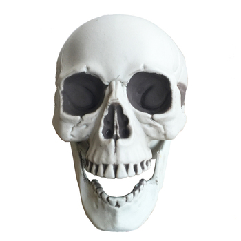 Halloween skeleton skull, Halloween skull bones life size160 Skull Haunted House Escape horror props Decorations 1