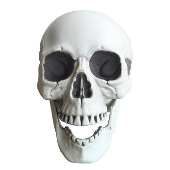 Halloween skeleton skull, Halloween skull bones life size160 Skull Haunted House Escape horror props Decorations 1