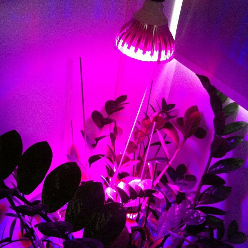Տաք էժան E27 Led Grow լամպեր Ամբողջությամբ - Մասնագիտական լուսավորություն - Լուսանկար 3