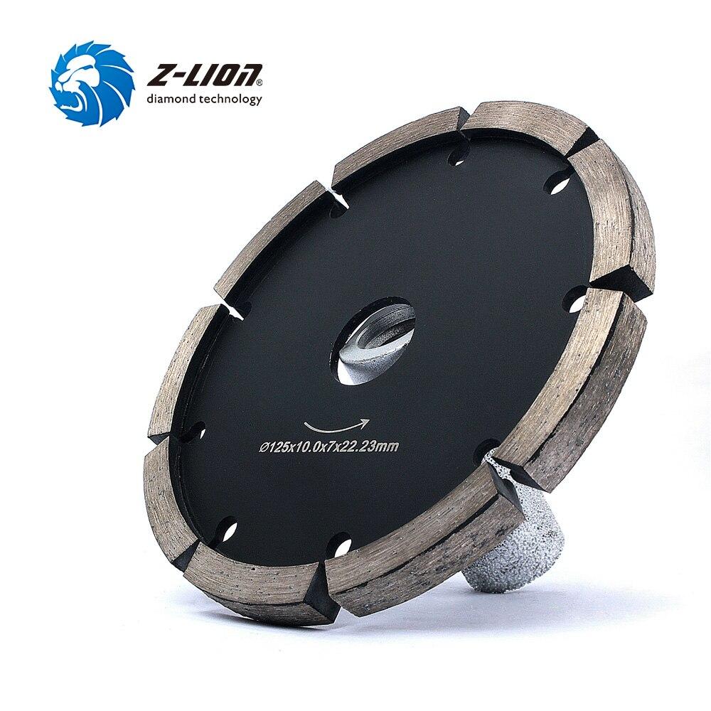 Z-LION 5