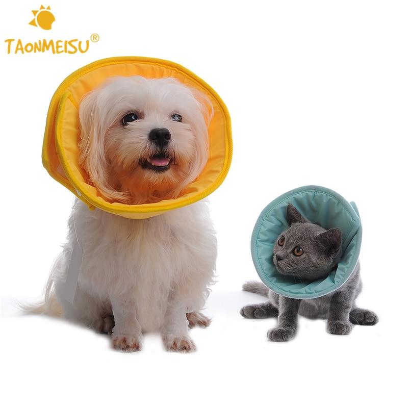 Collare Elisabettiano Morbido Prezzo.Taonmeisu Molle Pet Dog Collare Elisabettiano Ferita Guarigione