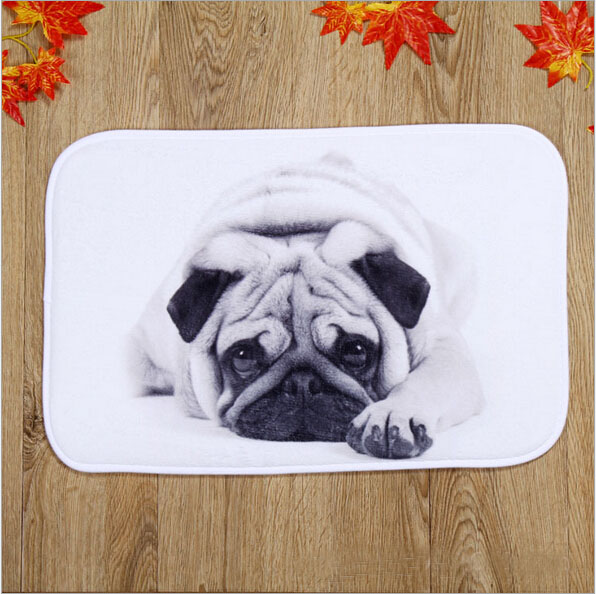 New Design Silent Dog Home Door Front Non Slip Mat Carpet 40x60cm Entrance Doormats Livi ...