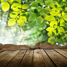 Laeacco Wooden Boards Sunshine Leaves Gunny Bag Sack Photography Backgrounds Customized Photographic Backdrops For Photo Studio favourite gunny 1315 8pc