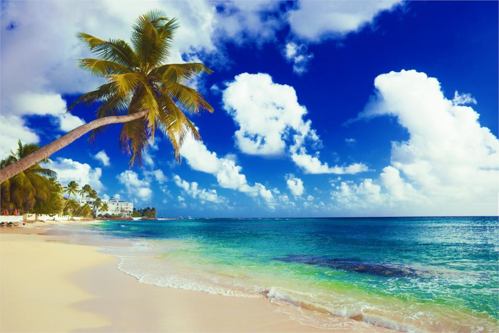 Home decoration sand sea beach the sun trees shore boat summer island paradise tropical Silk Fabric Poster Print MM630