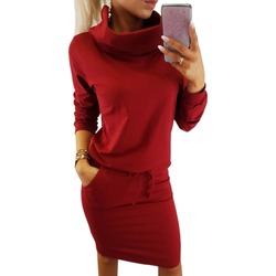 Pocket 2018 Women Autumn Dress Turtleneck Female Drawstring Elastic Waist Straight Party Causal Solid Lace-Up Red Dresses M0165 2