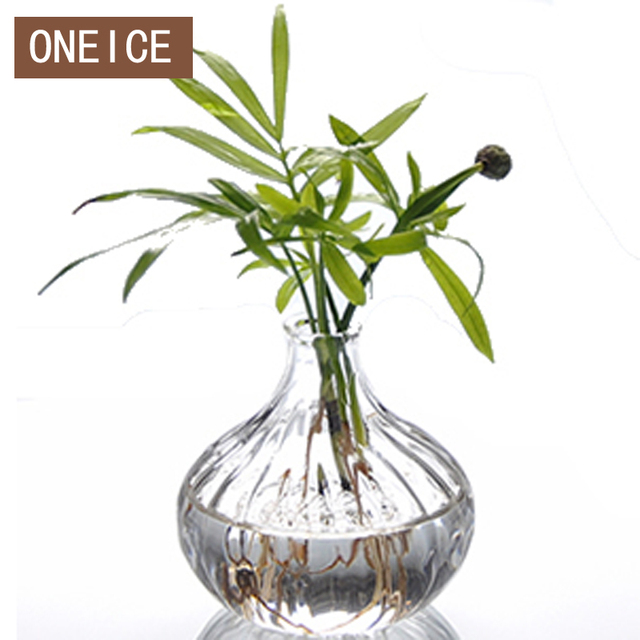 Oneice Striped Glass Vase Hydroponic Married Housewarming Gifts Gift