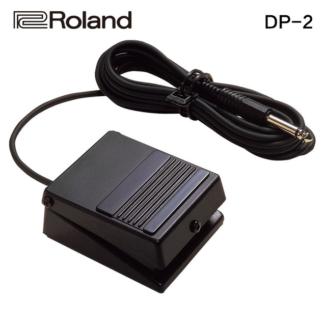 Roland DP-2 Momentary Footswitch / Sustain Pedal Keyboard / Synthesizer / Electric Piano Sustain Pedal / Damper Pedal