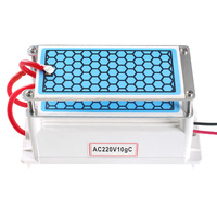 New 220V Ozone Generator 10g With Ceramic Plate Long Life Style Longevity Double Sheet For Chemical