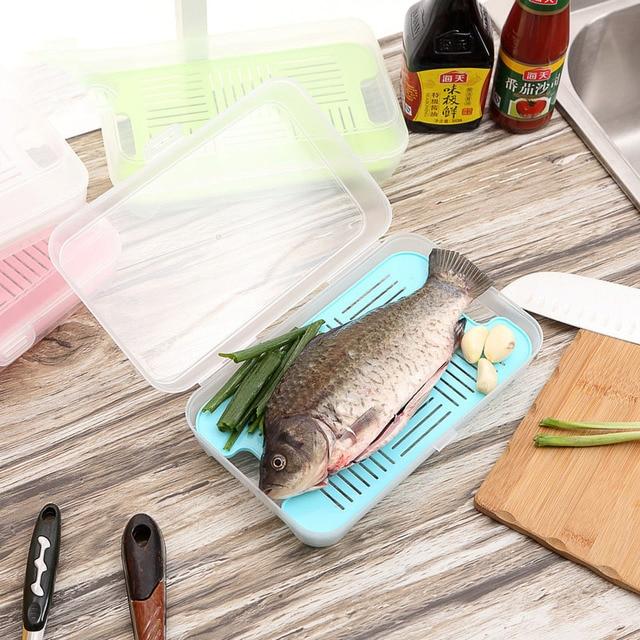 Modern Creative Meat Food Fruit Refrigerator Draining Storage Box Fish Meat Seafood Crisper Sealed Freshness Preservation & Modern Creative Meat Food Fruit Refrigerator Draining Storage Box ... Aboutintivar.Com