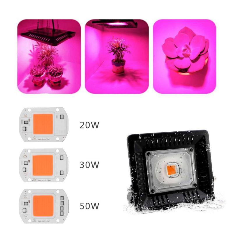 AC 110V Full Spectrum Indoor Plant Growth Lamp 20W 30W 50W DIY COB LED Grow Light Chip