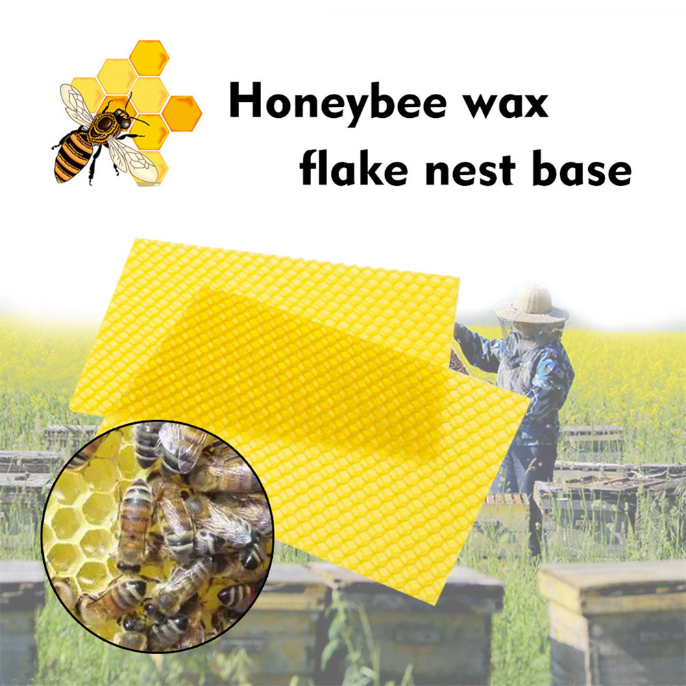 Hot 10pcs/30pcs Beeswax Sheets with Honeycomb Texture Bees Wax Coated Deep Foundation Flake Nest Base FQ ing|Bee Hives| |  -