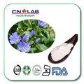Sol natural root/bloqueador solar Helianthus Tuberosus Extract Pó Helianthus tuberosus L. Inulina em pó 50%-90%