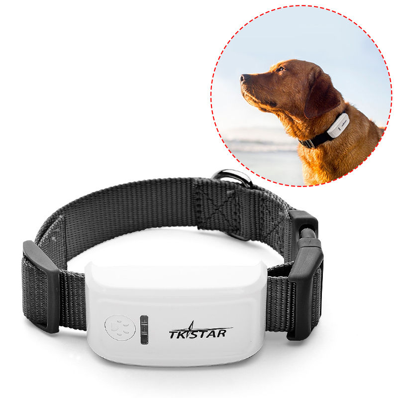 tkstar gps perro mascota collar llavero gps tracker TK909 GPS + GPRS - Electrónica del Automóvil - foto 4
