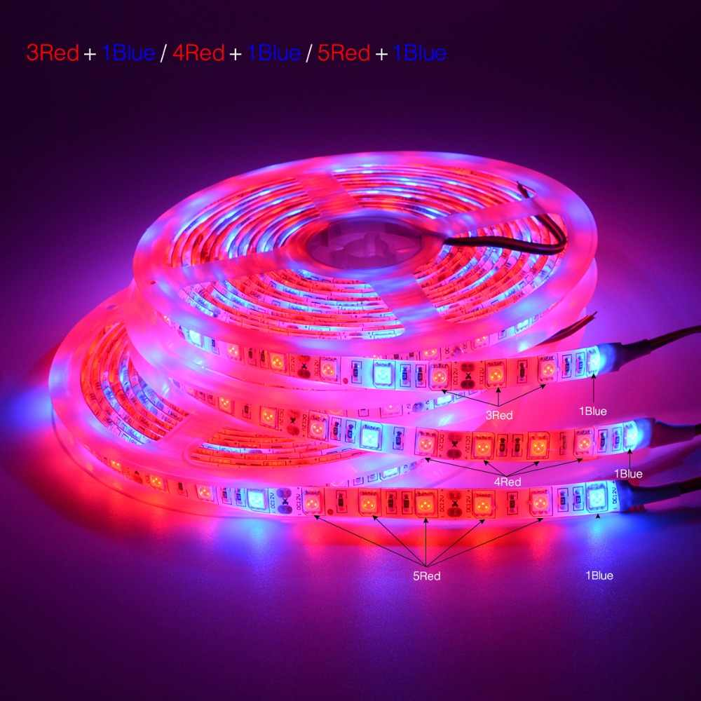 Full Spectrum 5M 5050 waterproof LED Strip Indoor Flexible  grow LED Phyto lamp tape for Greenhouse Plants Veg Flower Growth