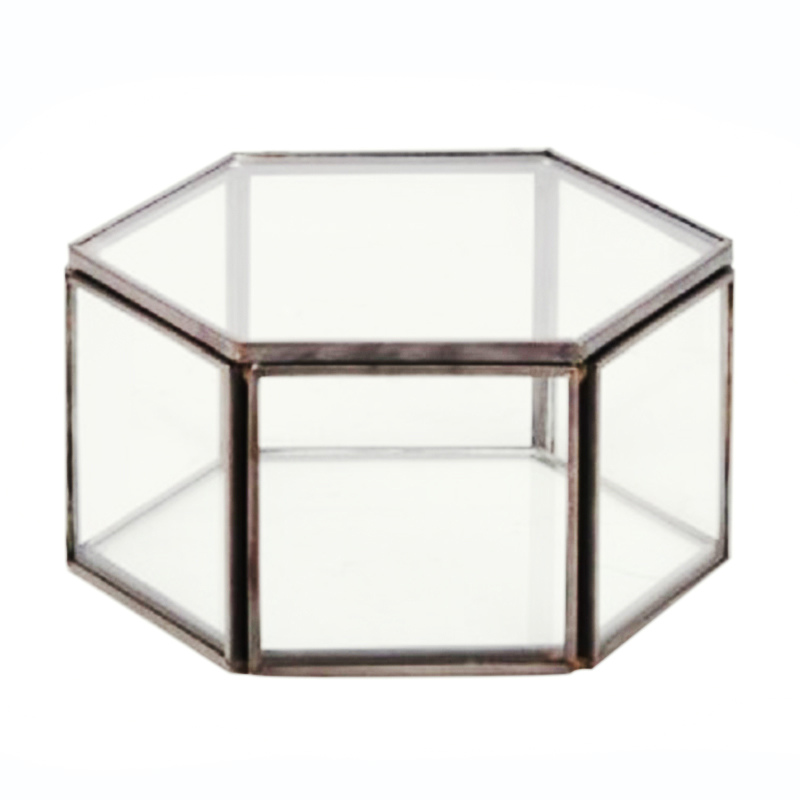 Jewelry-Box Glass Clear Organize-Holder Tabletop Succulent-Plants-Container Storage-Black