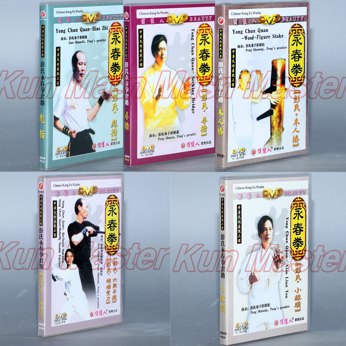 A Set Yong Chun Quan Video Chinese Kung Fu Disc Wing Chun Teaching DVD English Subtitles 5 DVD wang chun 9x3 5 5