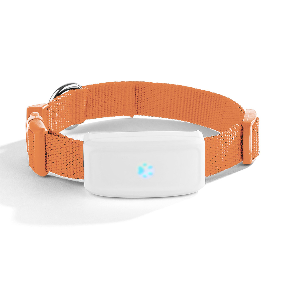 Traqueur imperméable superbe de GPS d'animal familier de chat de chien de TKstar TK911 de Lexitek double positionnant l'application d'android IOS - 1