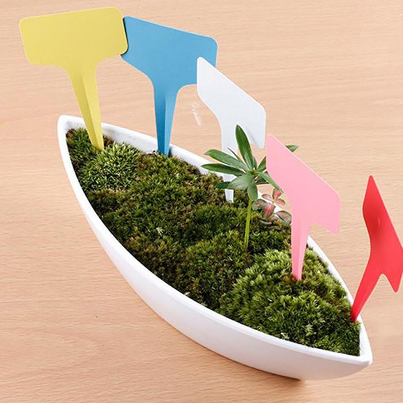 10*60Cm 5Pcs T-Type Insert Labels For Garden Nursery Mini Colorful Labels For Succulents Plant Flower Pot Florist Tool(China)