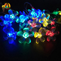 Holiday Cherry Garland LED String Lights AA Battery 5M 50LED Ferias Rose Garland LED Luzes Cordas Bateria Events and Party Light